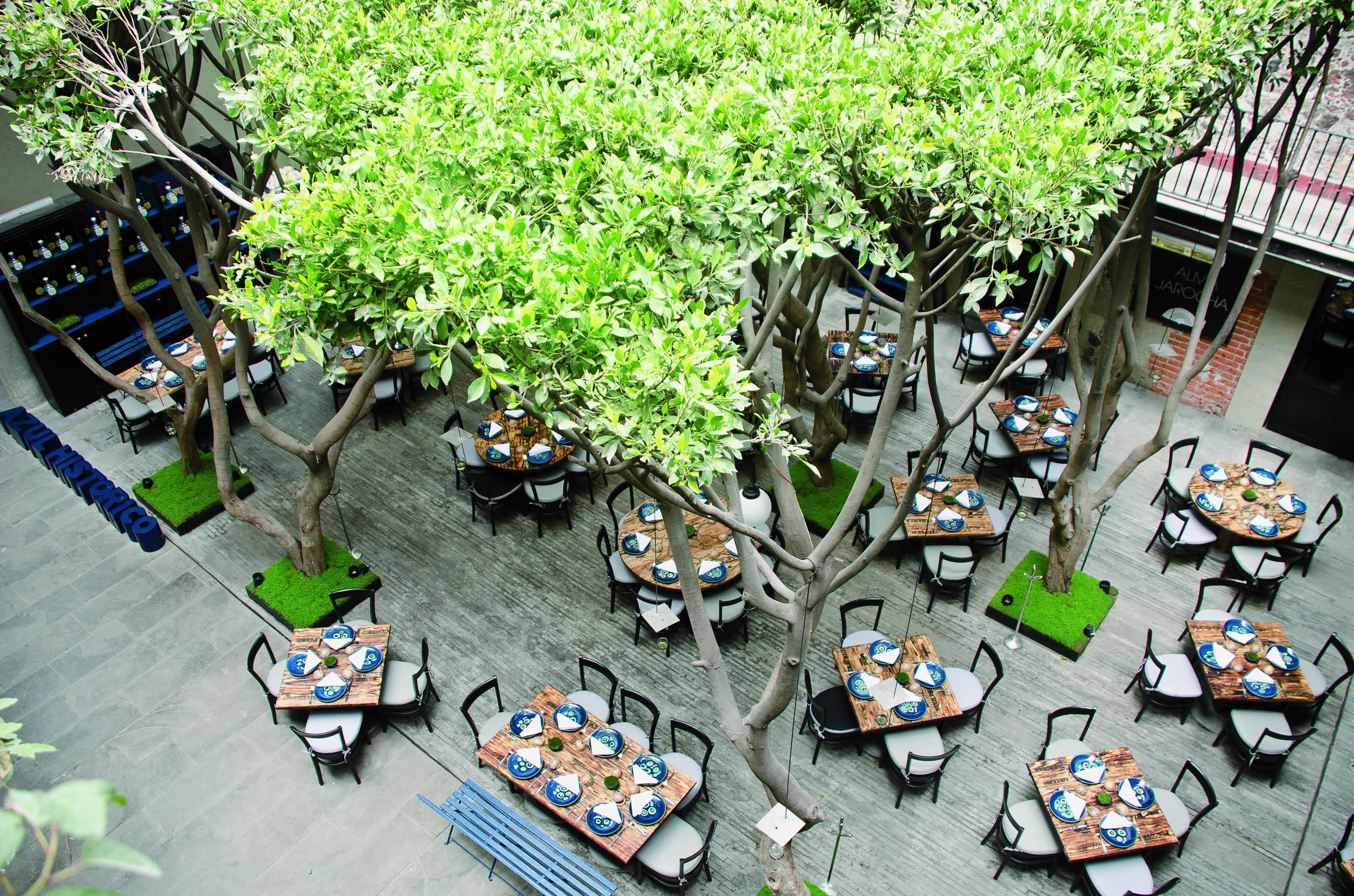 Azul hist rico for Cocina vanguardia definicion